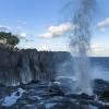 Cap Méchant dans le Sud de l'île