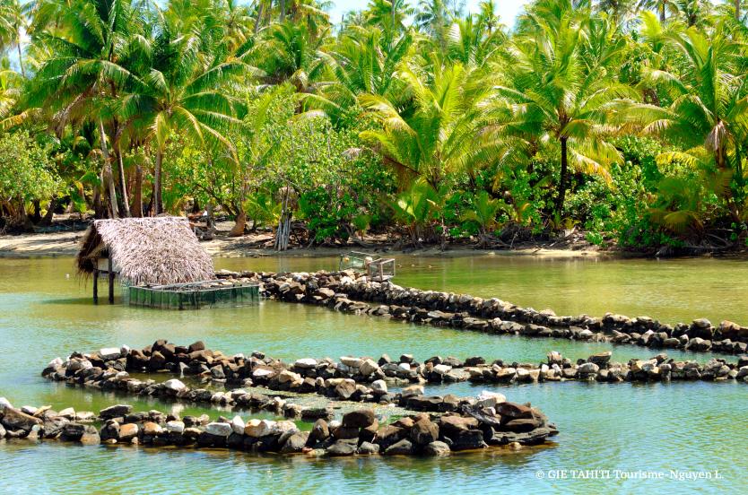 Parcs à poisson sur l'île de Huahine.