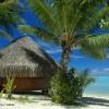 Pension chez l'habitant avec les pieds dans le sable-la pension Nono à Bora Bora.