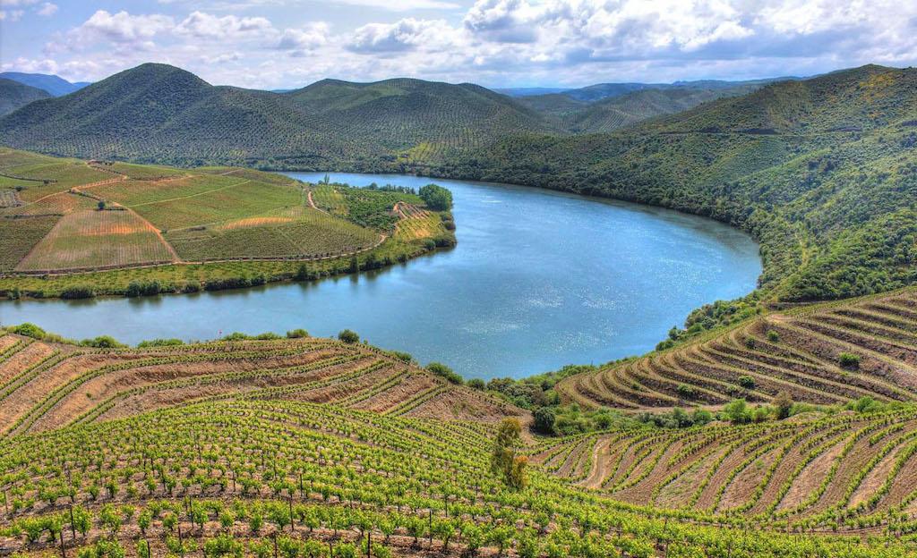 La vallée du Douro et ses vignes