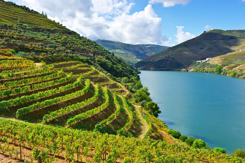 La vallée du Douro reconnu par l'Unesco formant une partie de la frontière avec l'Espagne