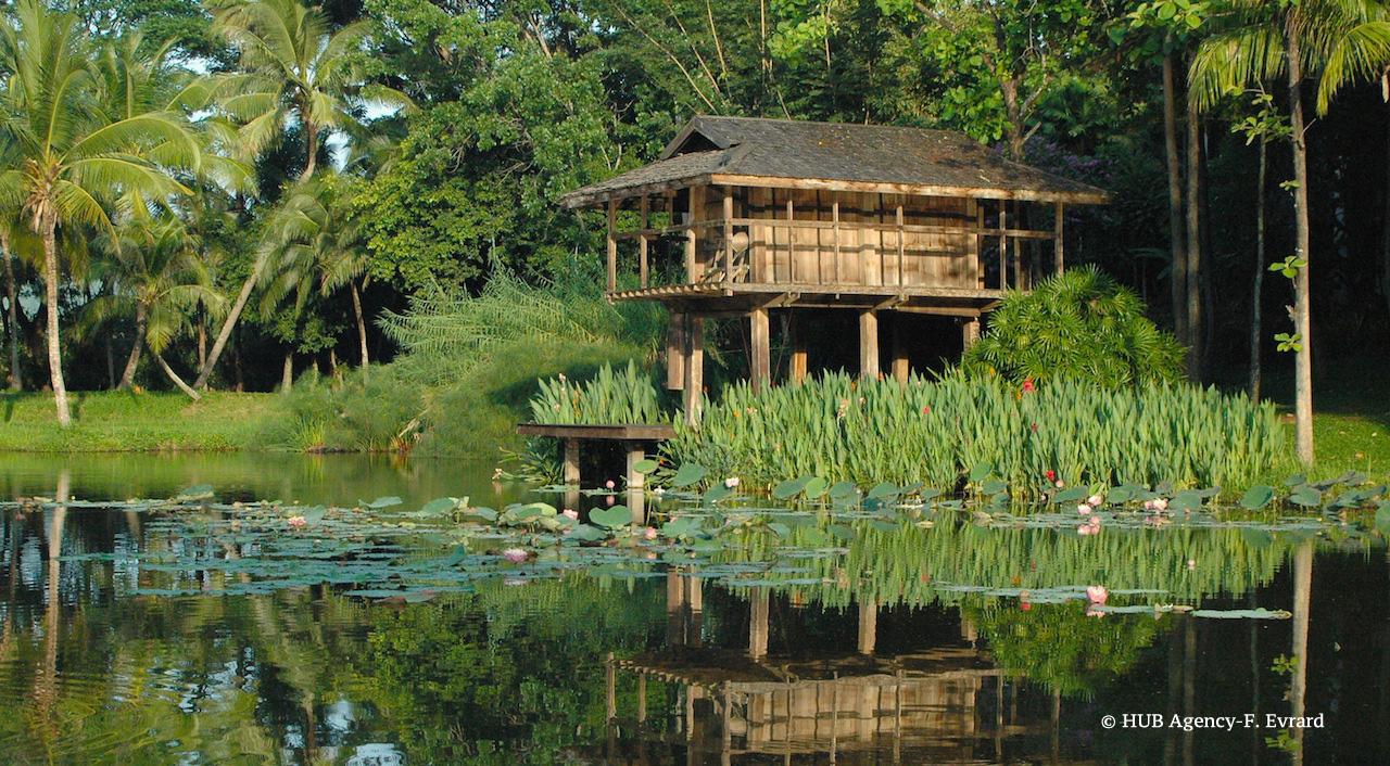 Pièce d'eau Four Season Chiang Mai