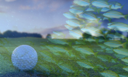 golf and diving